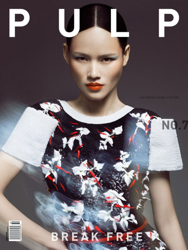 meghan-collison-alice-glass-aimee-mullins-thi-tuyet-lan-for-pulp-magazine-no-7-spring-2013-covers-3 (1)