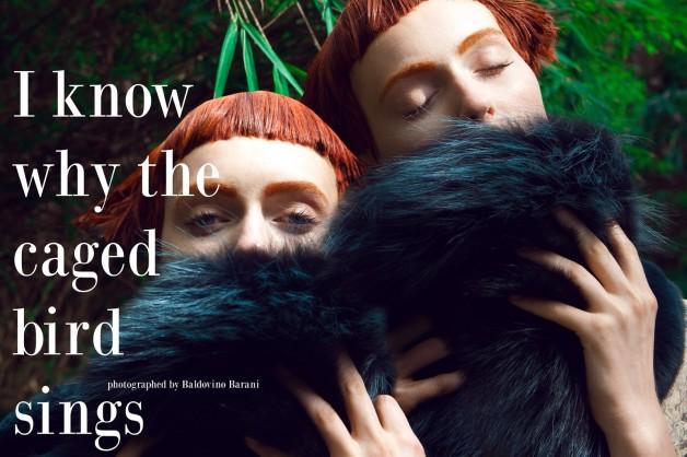 Baldovino Barani For Designare Couture